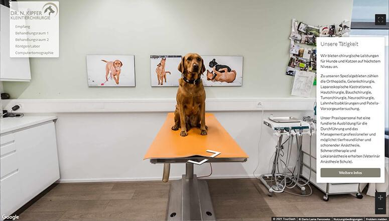 Virtueller 360° Rundgang Tierarzt